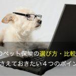 犬のペット保険の選び方・比較方法 おさえておきたい4つのポイント