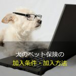 犬のペット保険の加入条件・加入方法
