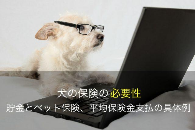 犬の保険の必要性