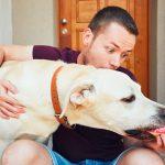犬の異物誤飲  身近に潜む犬の誤飲・誤食事故の症状・治療・予防と危険な食べ物まとめ